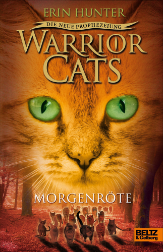 Warrior Cats Staffel 2 Band 3 Morgenröte