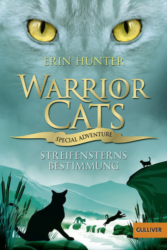 Warrior Cats Special Adventure 4 Streifensterns Bestimmung